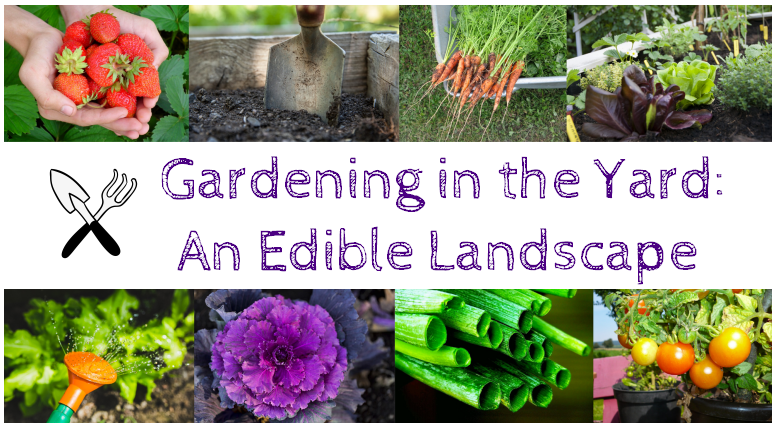 Gardening in the Yard: An Edible Landscape (In-Person)