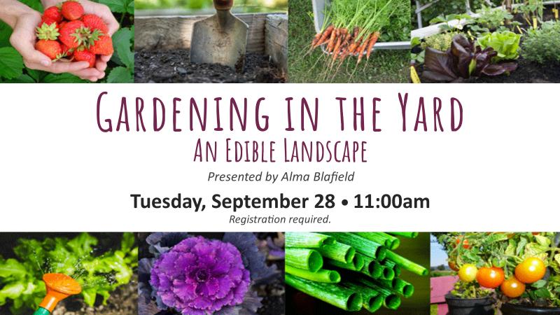 Gardening in the Yard 9-28